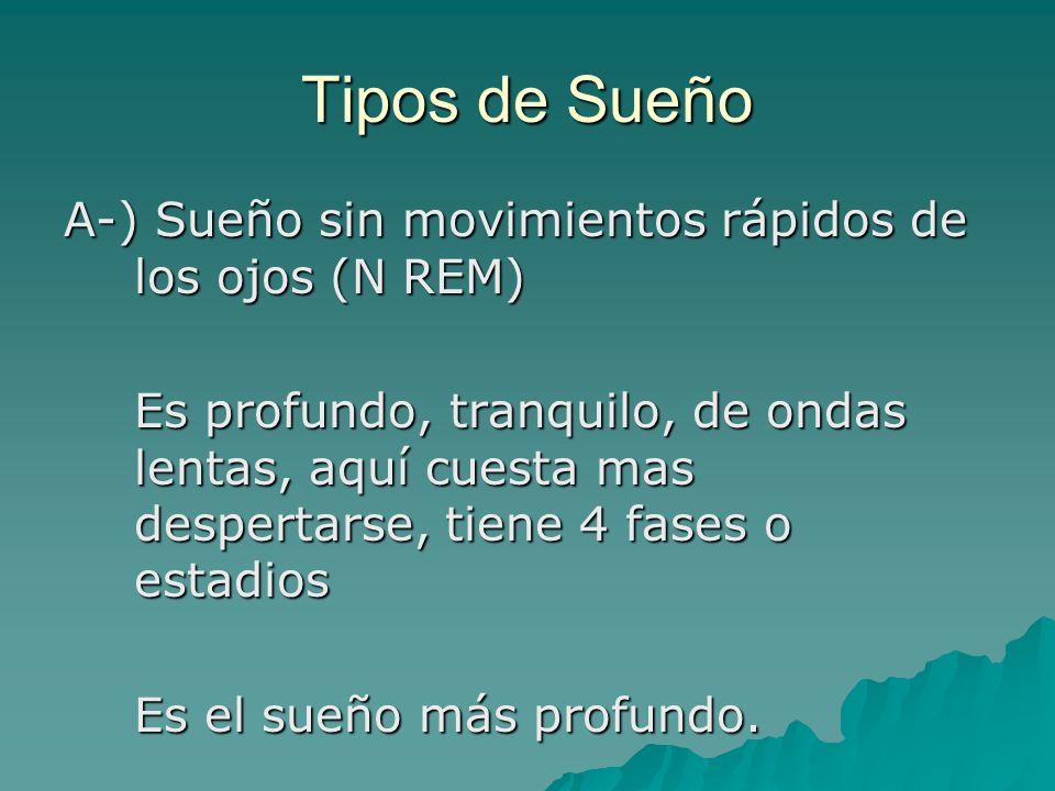 Tipos de Sueño A-) Sueño sin movimientos rápidos de los ojos (N REM)