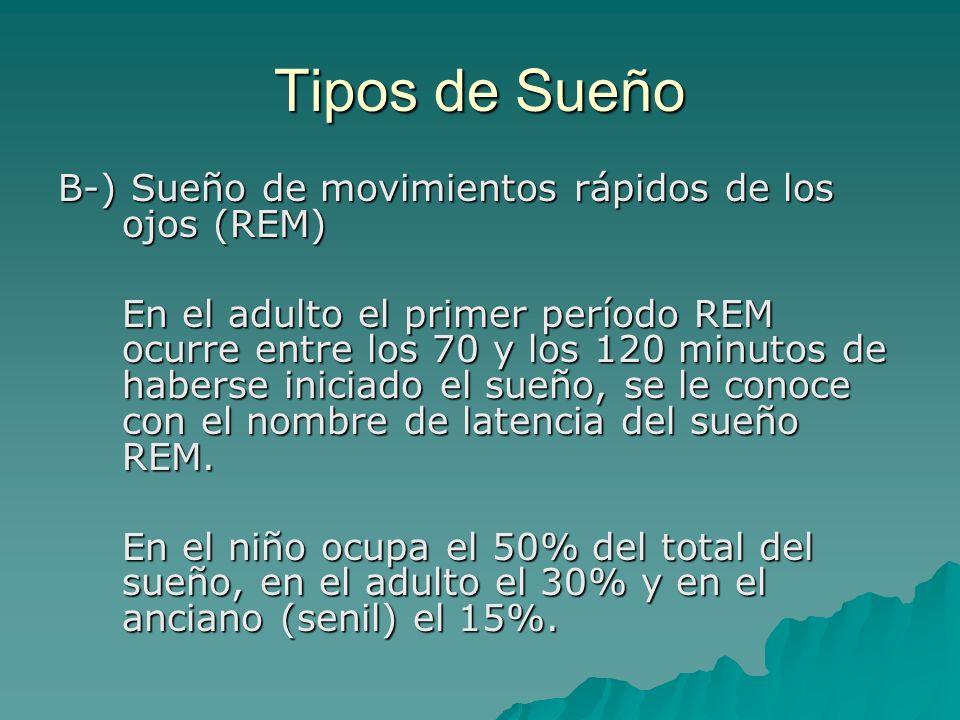 Tipos de Sueño B-) Sueño de movimientos rápidos de los ojos (REM)