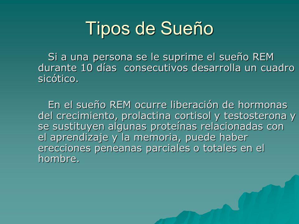 Tipos de Sueño Si a una persona se le suprime el sueño REM durante 10 días consecutivos desarrolla un cuadro sicótico.