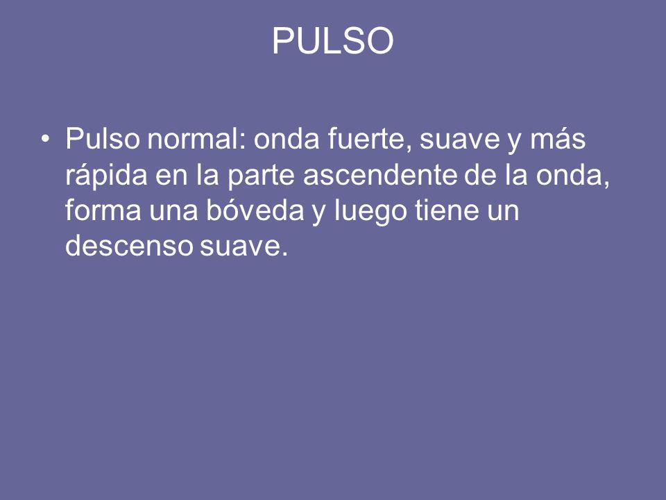 PULSO Pulso normal: onda fuerte, suave y más rápida en la parte ascendente de la onda, forma una bóveda y luego tiene un descenso suave.