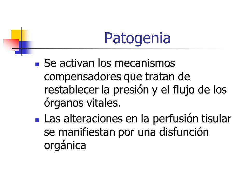 Patogenia Se activan los mecanismos compensadores que tratan de restablecer la presión y el flujo de los órganos vitales.
