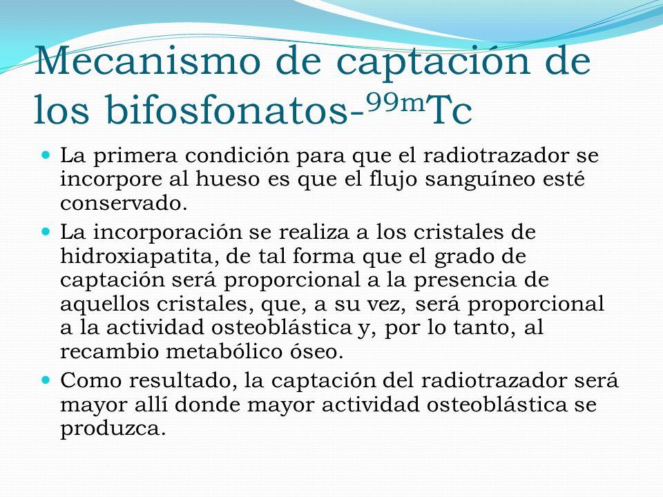 Mecanismo de captación de los bifosfonatos-99mTc