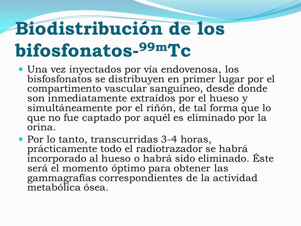 Biodistribución de los bifosfonatos-99mTc
