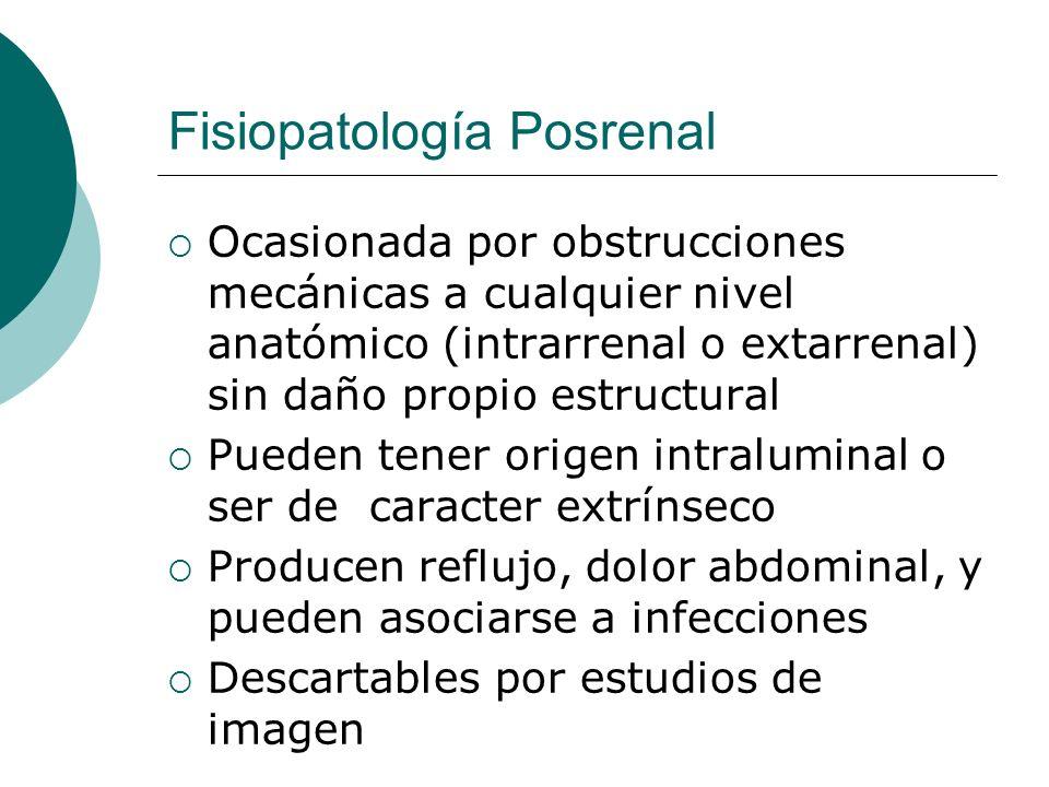 Fisiopatología Posrenal