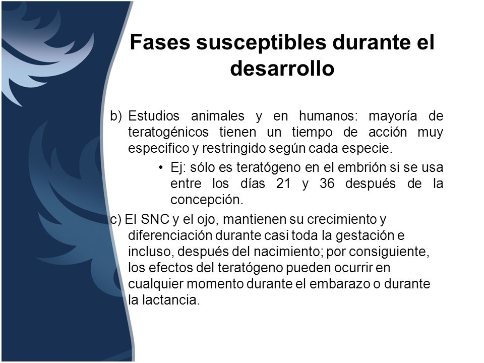 Fases susceptibles durante el desarrollo