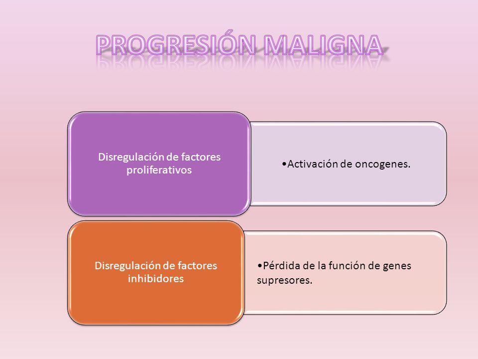 PROGRESIÓN MALIGNA Activación de oncogenes.