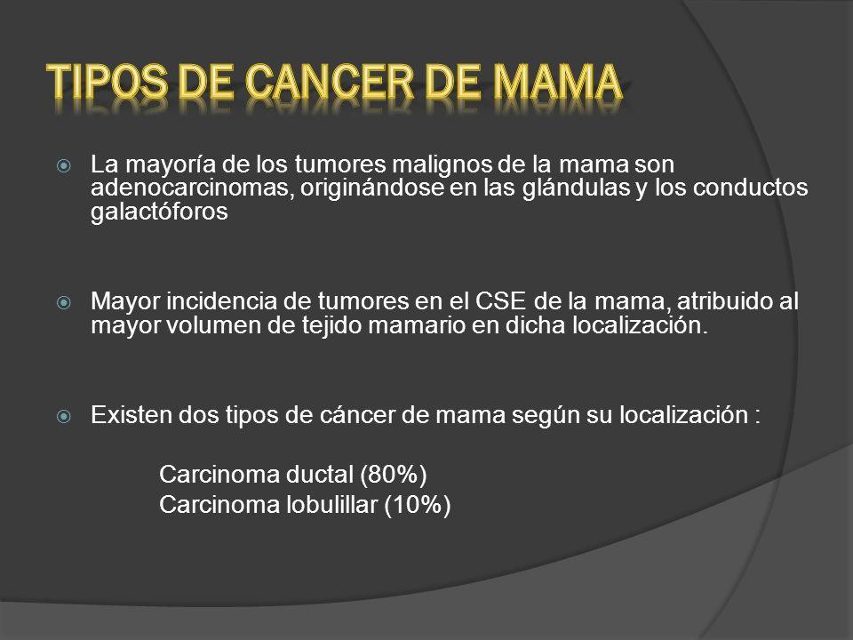 TIPOS DE CANCER DE MAMA La mayoría de los tumores malignos de la mama son adenocarcinomas, originándose en las glándulas y los conductos galactóforos.