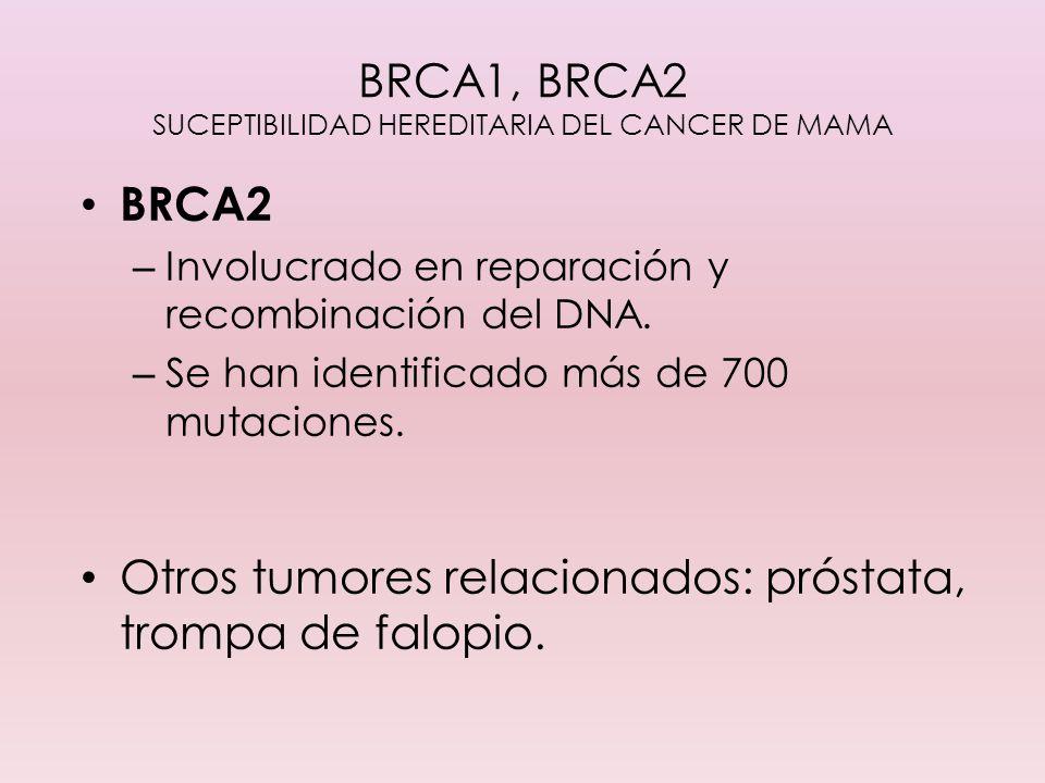 BRCA1, BRCA2 SUCEPTIBILIDAD HEREDITARIA DEL CANCER DE MAMA