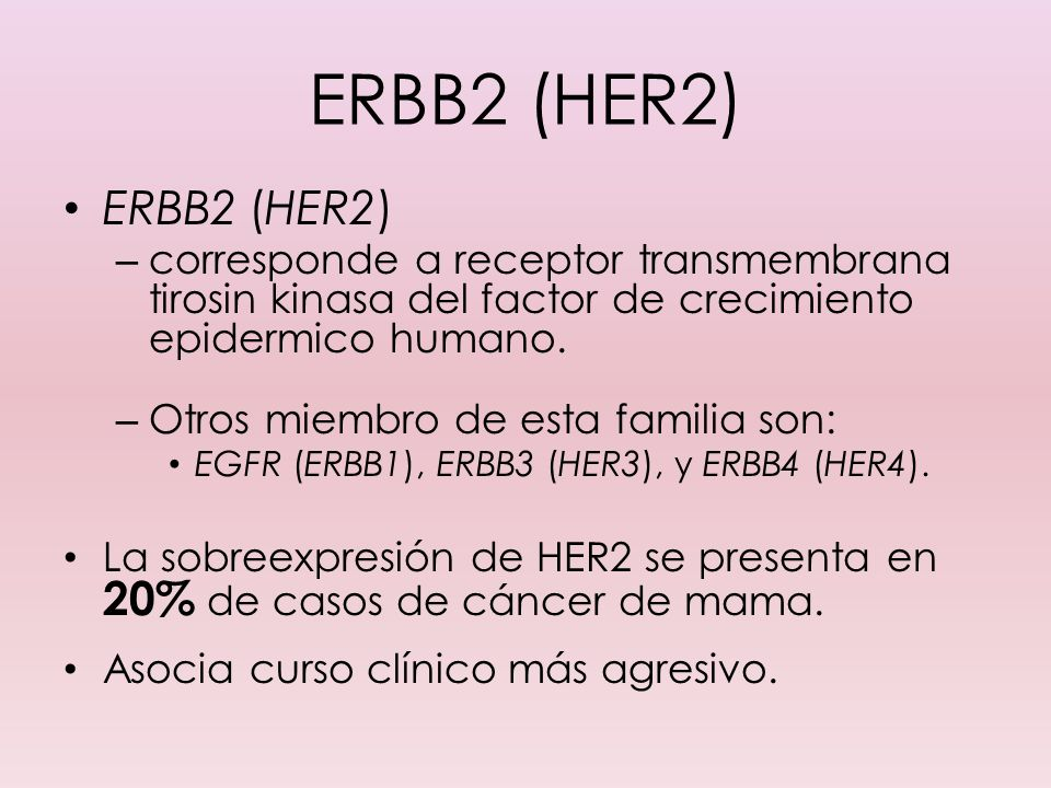 ERBB2 (HER2)ERBB2 (HER2) corresponde a receptor transmembrana tirosin kinasa del factor de crecimiento epidermico humano.