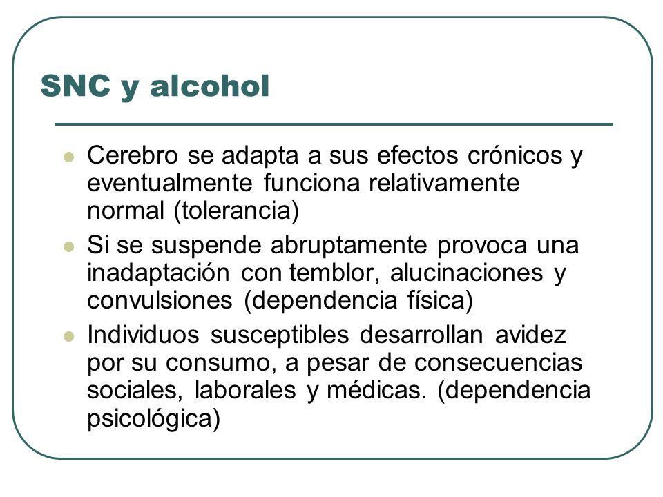 SNC y alcoholCerebro se adapta a sus efectos crónicos y eventualmente funciona relativamente normal (tolerancia)