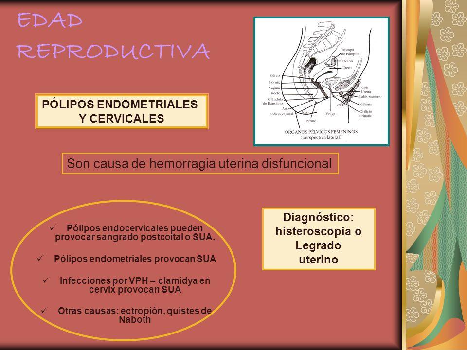 EDAD REPRODUCTIVA Son causa de hemorragia uterina disfuncional