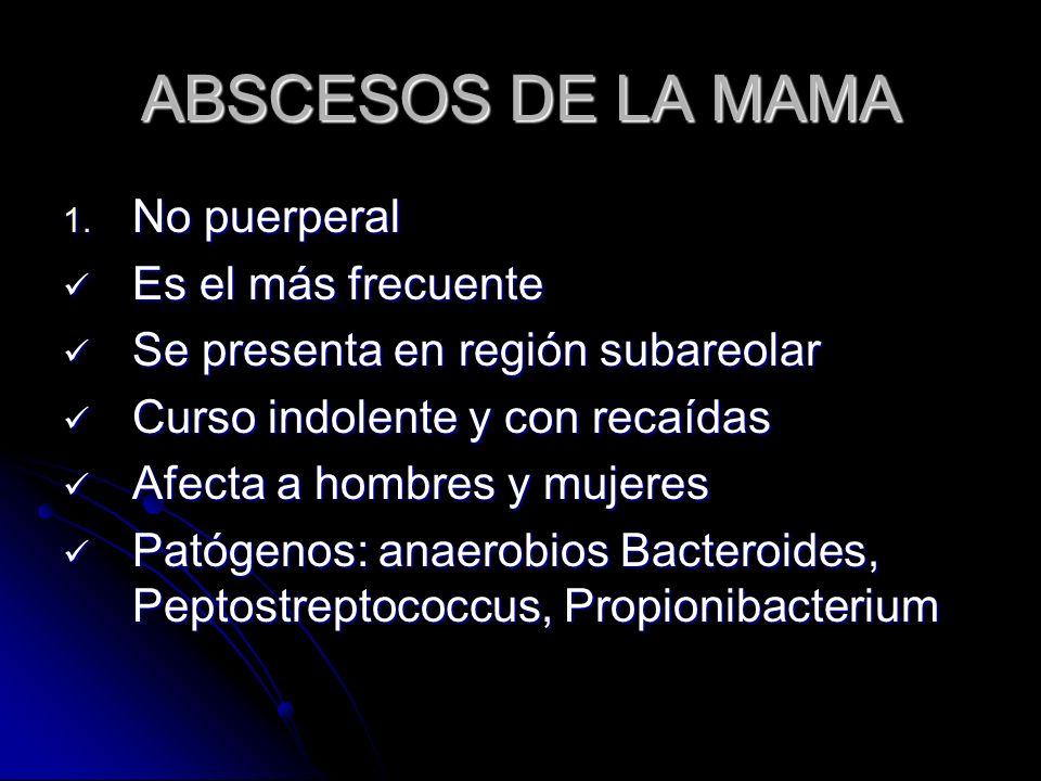 ABSCESOS DE LA MAMA No puerperal Es el más frecuente