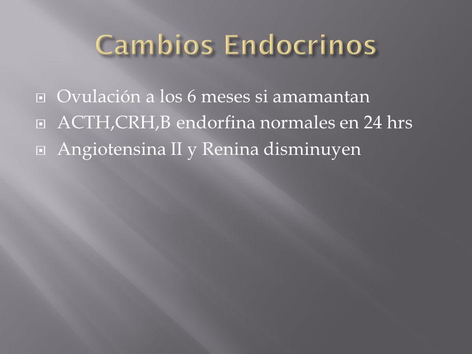 Cambios Endocrinos Ovulación a los 6 meses si amamantan