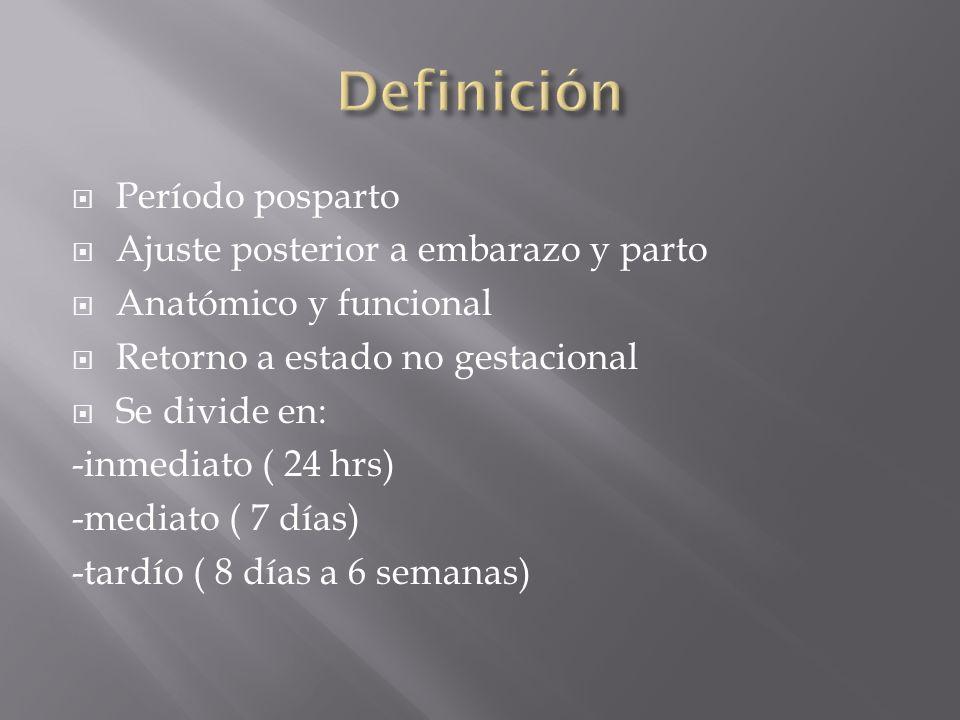 Definición Período posparto Ajuste posterior a embarazo y parto