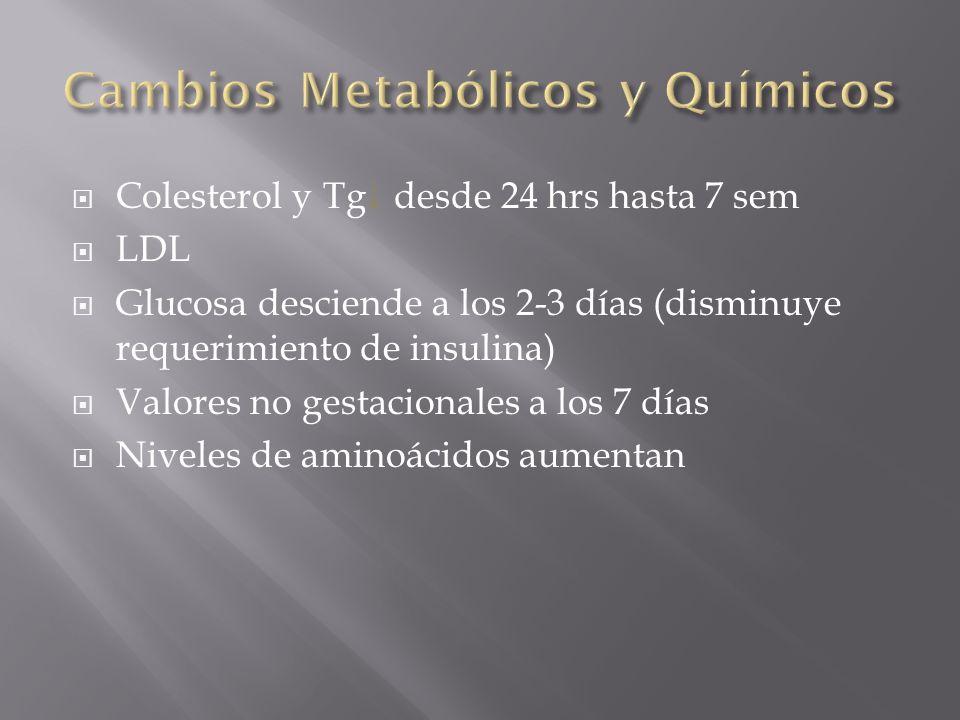 Cambios Metabólicos y Químicos