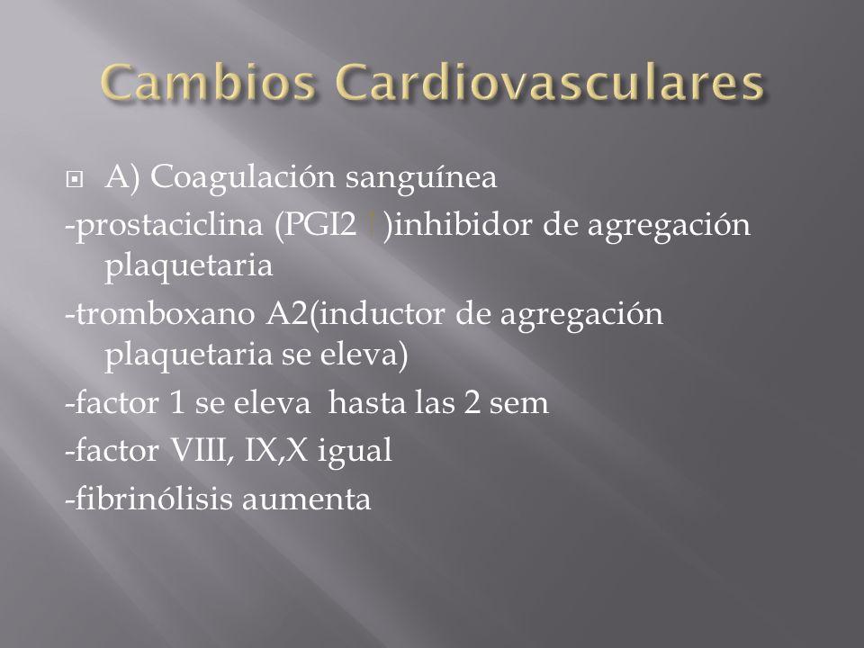 Cambios Cardiovasculares