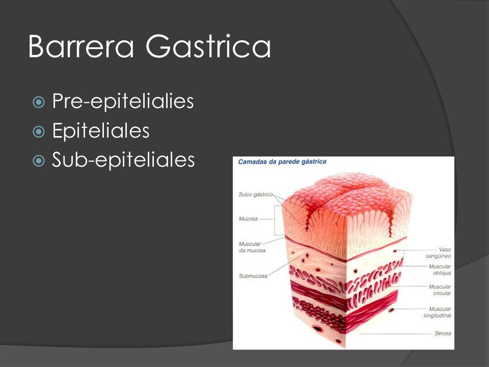 Barrera Gastrica Pre-epitelialies Epiteliales Sub-epiteliales
