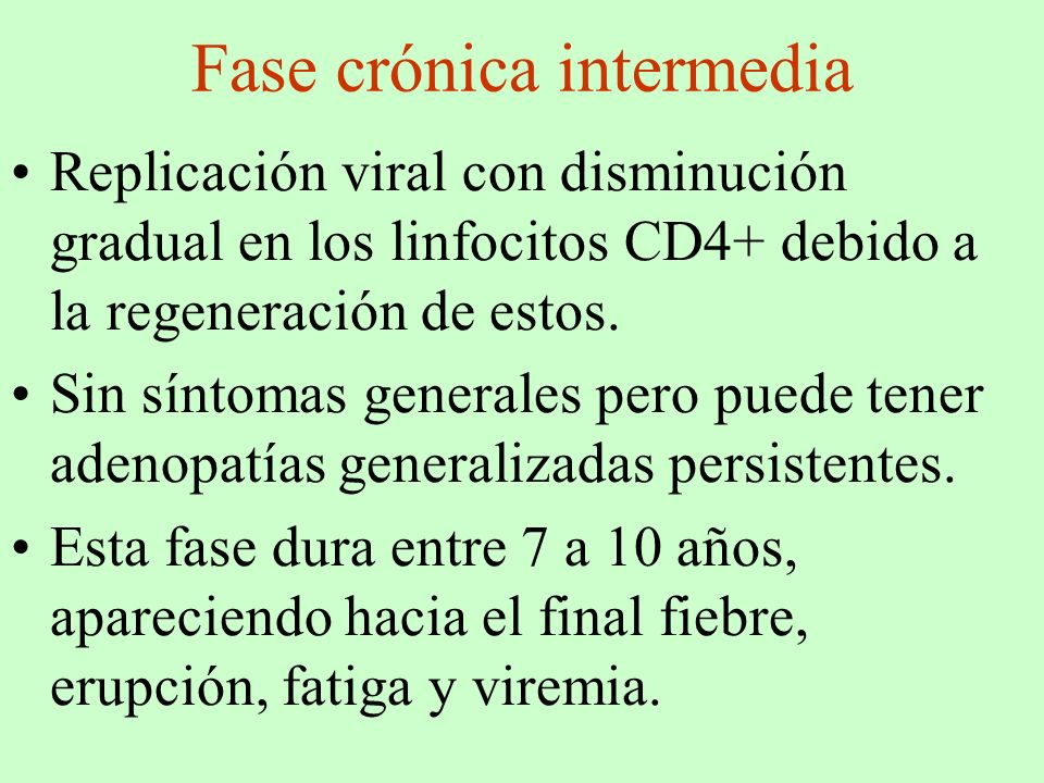 Fase crónica intermedia