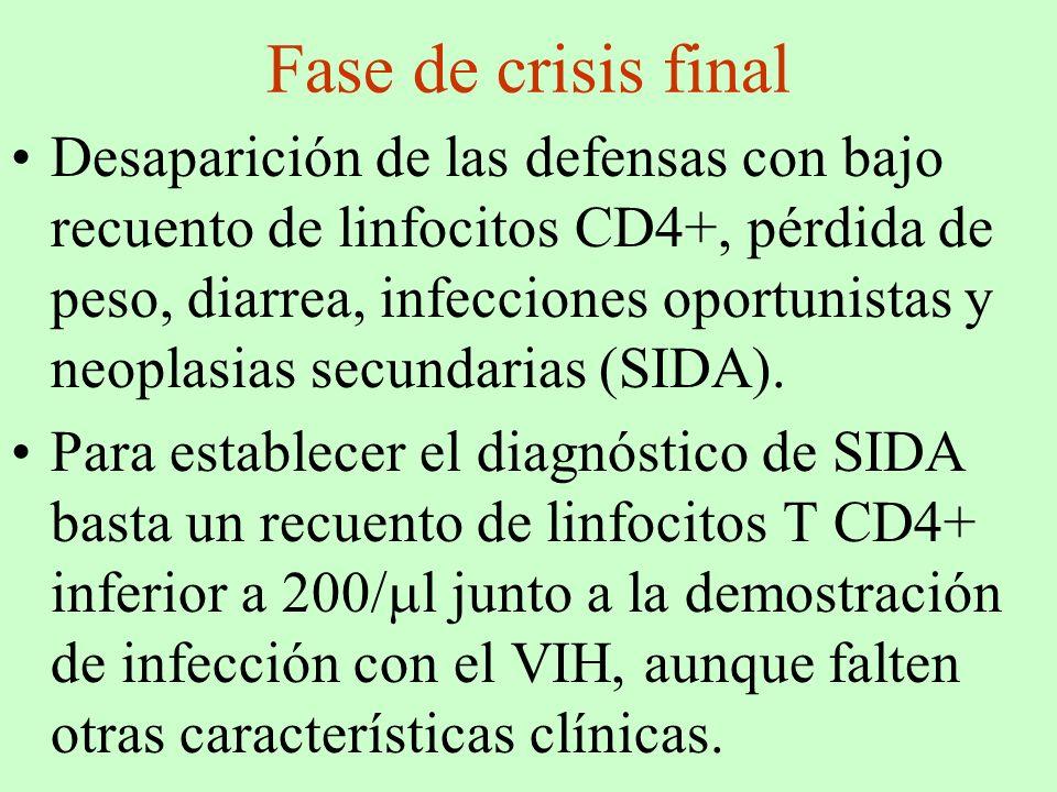 Fase de crisis final