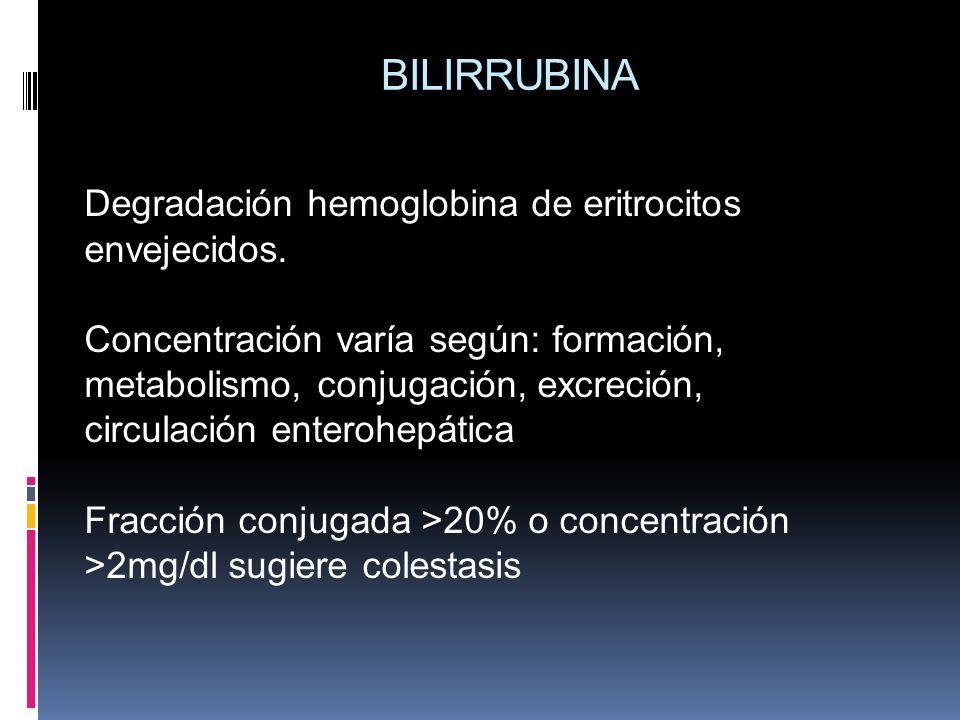 BILIRRUBINA Degradación hemoglobina de eritrocitos envejecidos.