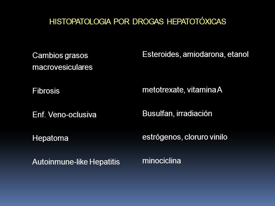 HISTOPATOLOGIA POR DROGAS HEPATOTÓXICAS