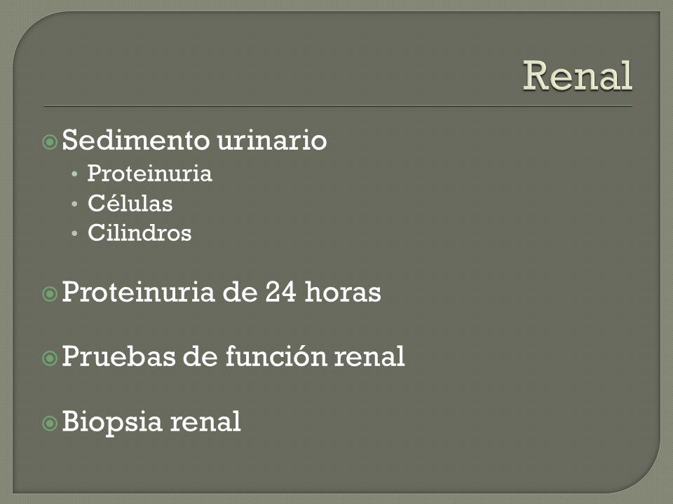 Renal Sedimento urinario Proteinuria de 24 horas