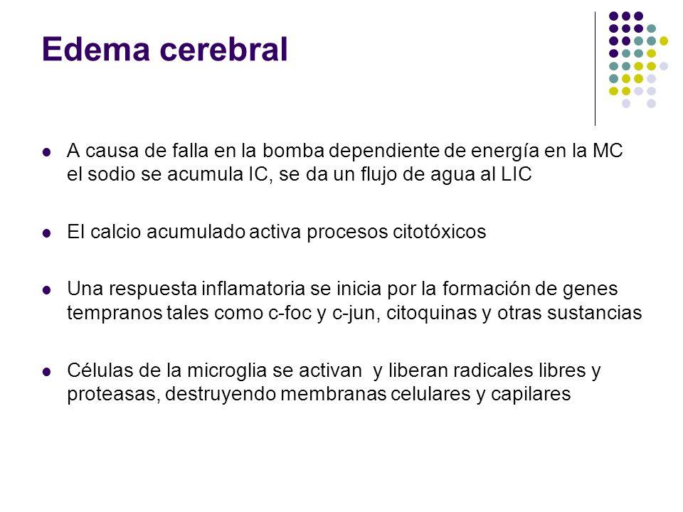 Edema cerebral A causa de falla en la bomba dependiente de energía en la MC el sodio se acumula IC, se da un flujo de agua al LIC.