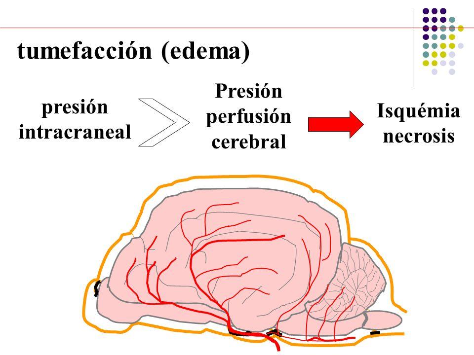 Presión perfusión cerebral