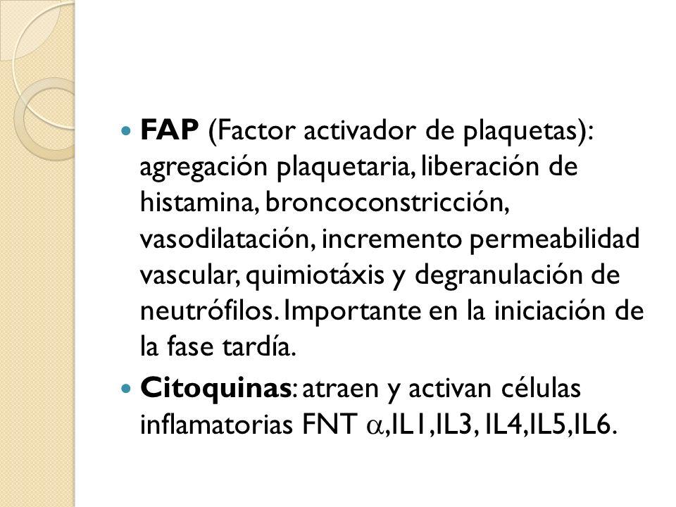 FAP (Factor activador de plaquetas): agregación plaquetaria, liberación de histamina, broncoconstricción, vasodilatación, incremento permeabilidad vascular, quimiotáxis y degranulación de neutrófilos. Importante en la iniciación de la fase tardía.