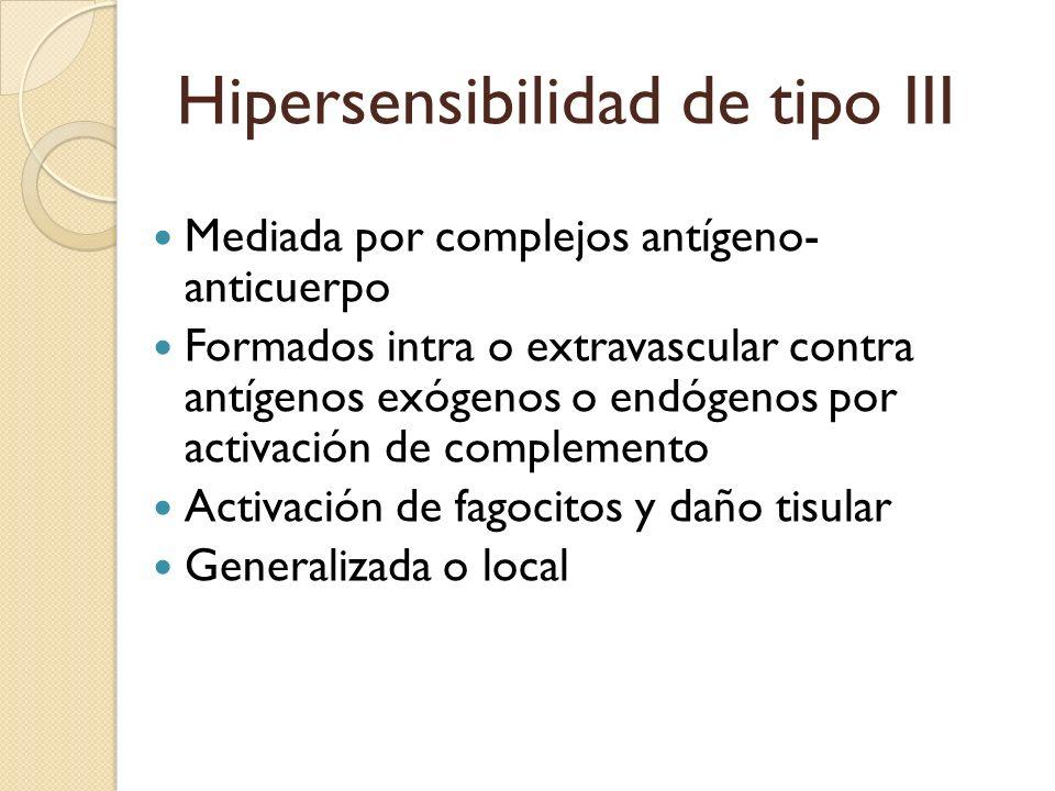 Hipersensibilidad de tipo III