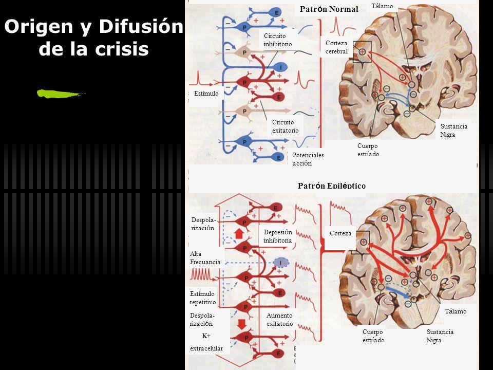 Origen y Difusión de la crisis