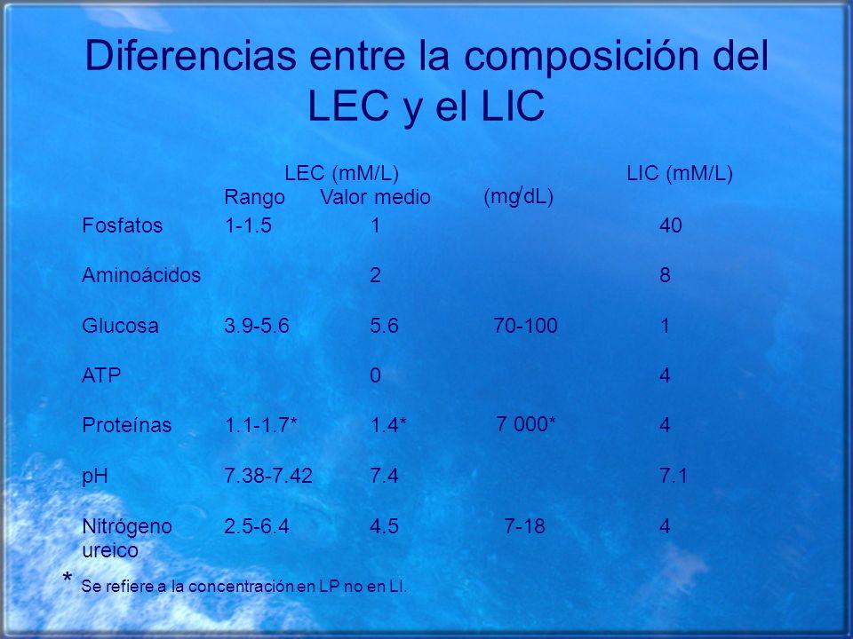 Diferencias entre la composición del LEC y el LIC