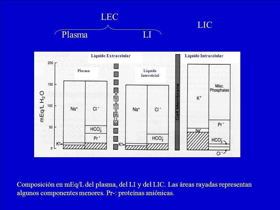 LEC LIC. Plasma. LI. Líquido Extracelular. Líquido Intracelular. Plasma. Líquido. Intersticial.