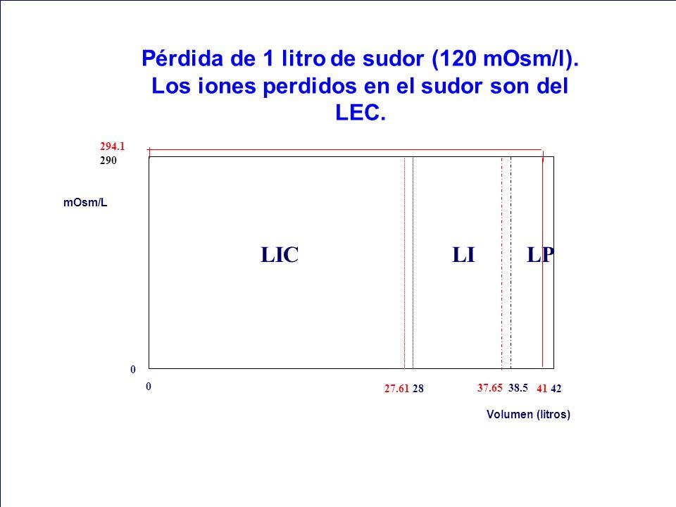 Pérdida de 1 litro de sudor (120 mOsm/l)