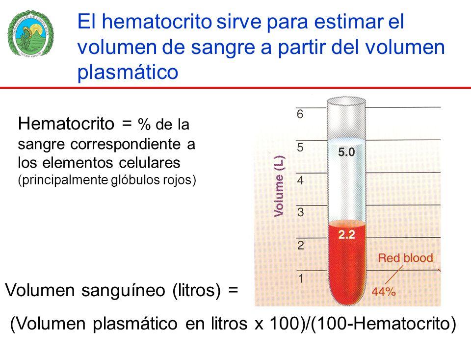 El hematocrito sirve para estimar el volumen de sangre a partir del volumen plasmático