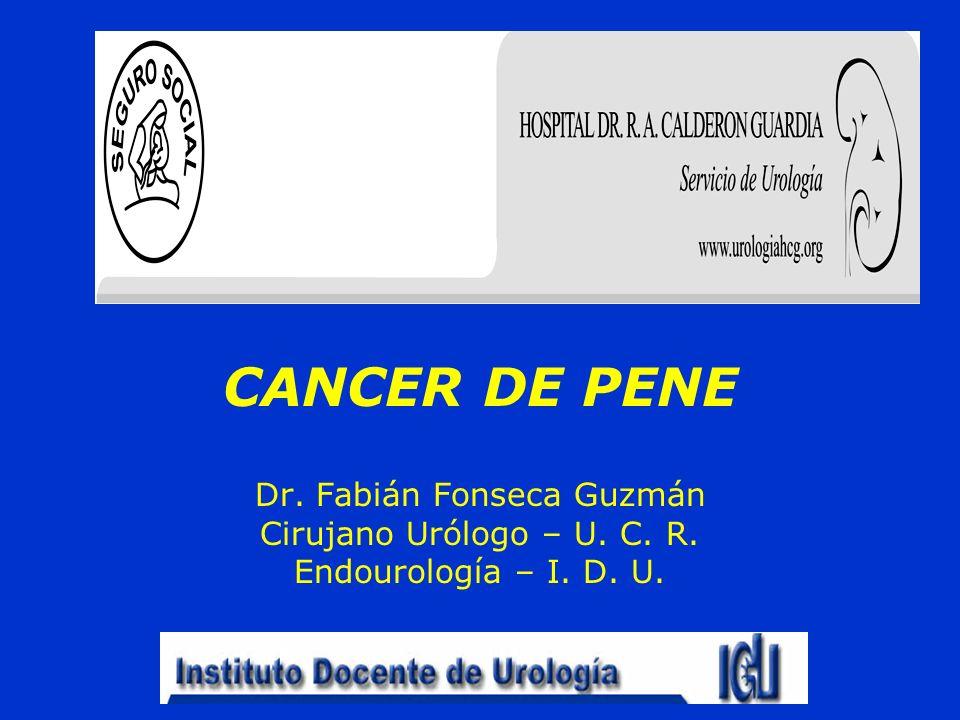 Dr. Fabián Fonseca Guzmán