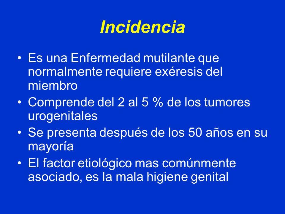 Incidencia Es una Enfermedad mutilante que normalmente requiere exéresis del miembro. Comprende del 2 al 5 % de los tumores urogenitales.