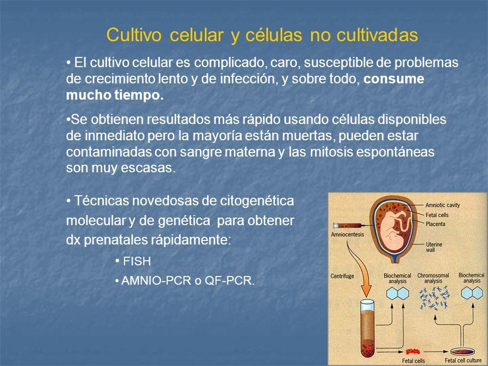 Cultivo celular y células no cultivadas