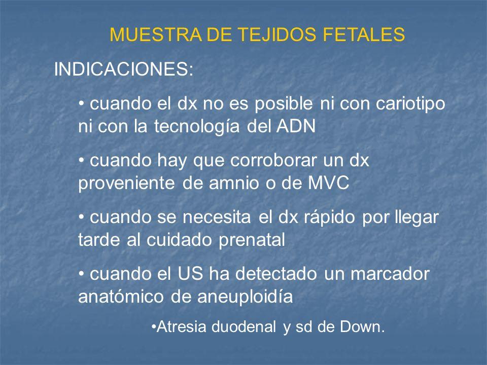 MUESTRA DE TEJIDOS FETALES