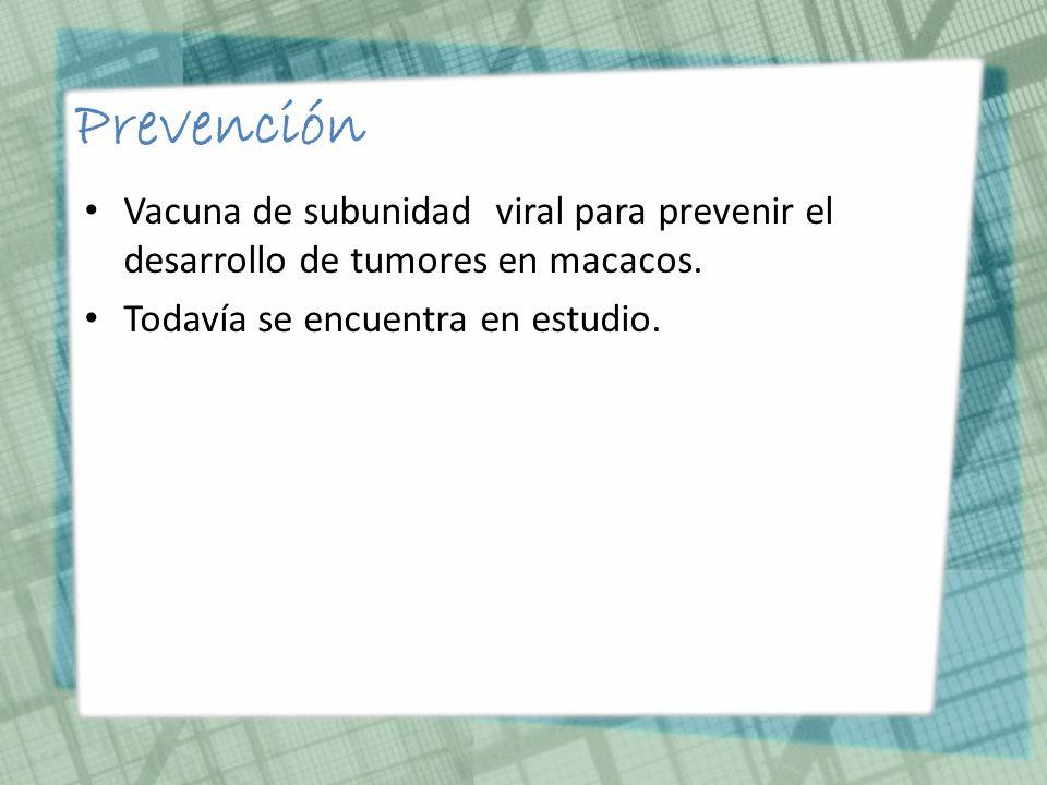 Prevención Vacuna de subunidad viral para prevenir el desarrollo de tumores en macacos.