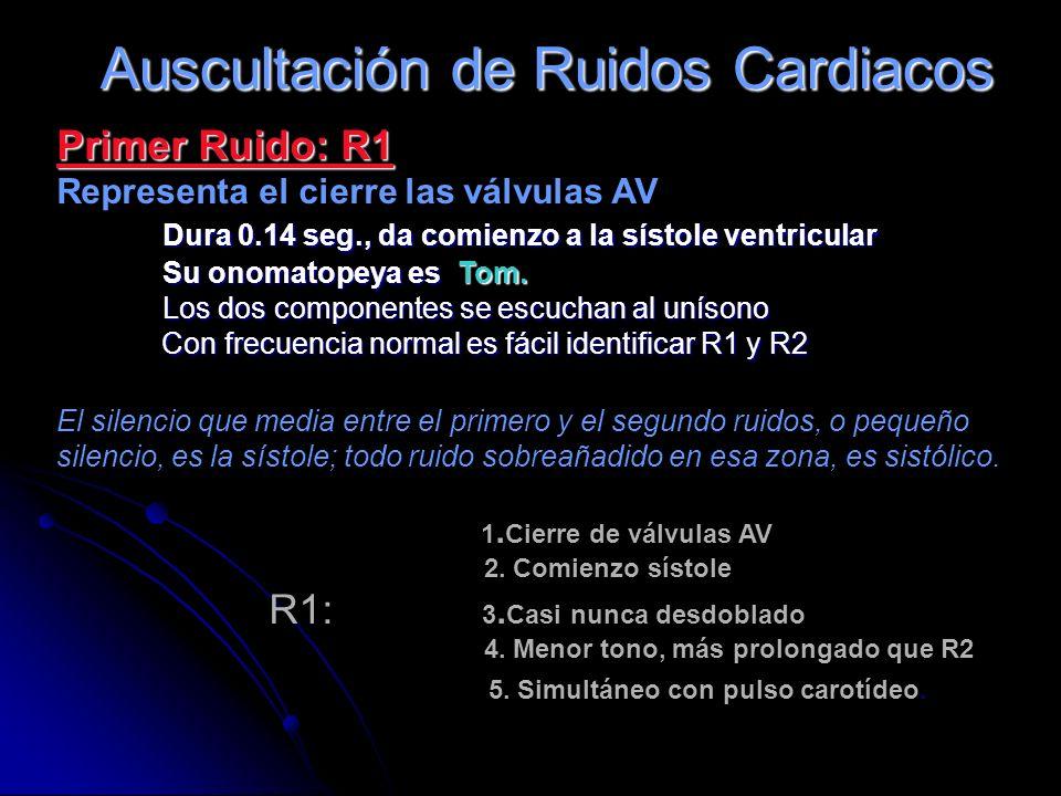 Auscultación de Ruidos Cardiacos