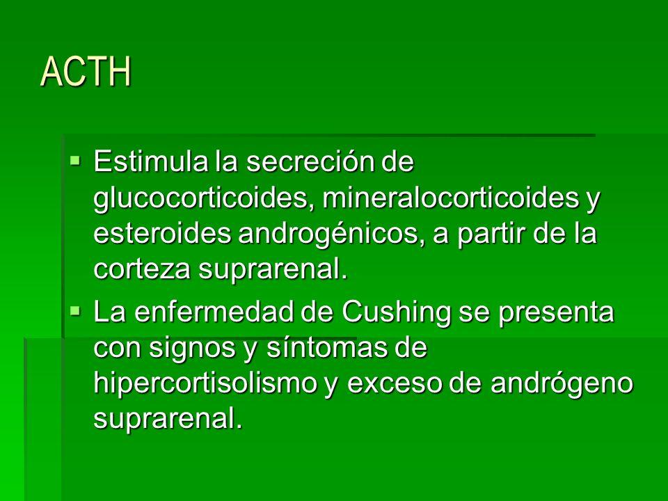 ACTH Estimula la secreción de glucocorticoides, mineralocorticoides y esteroides androgénicos, a partir de la corteza suprarenal.