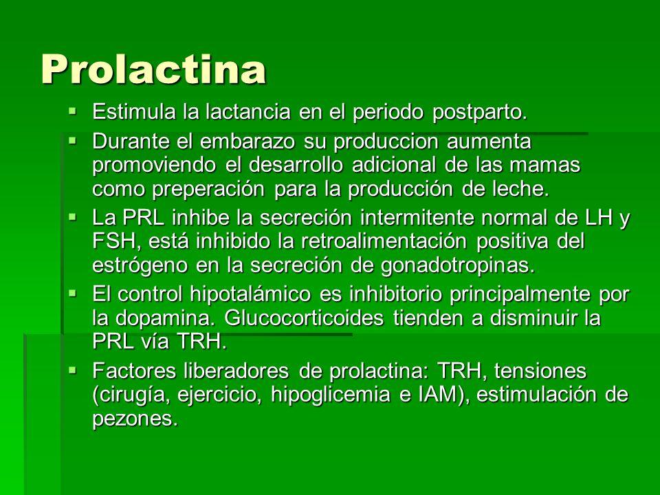 Prolactina Estimula la lactancia en el periodo postparto.