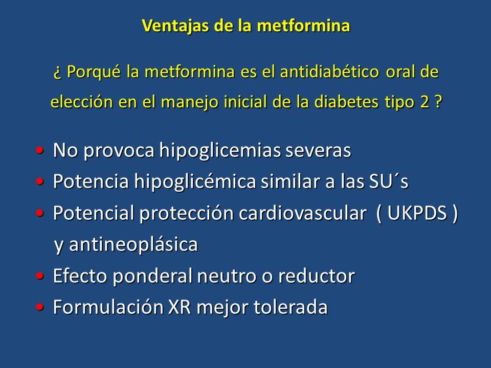 No provoca hipoglicemias severas