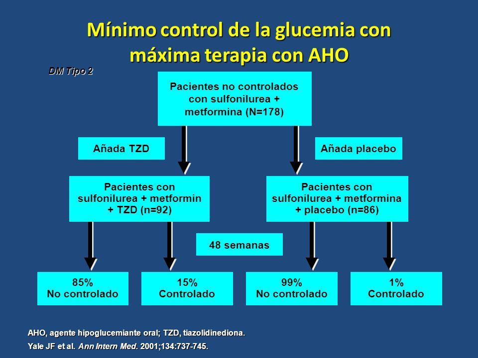 Mínimo control de la glucemia con máxima terapia con AHO
