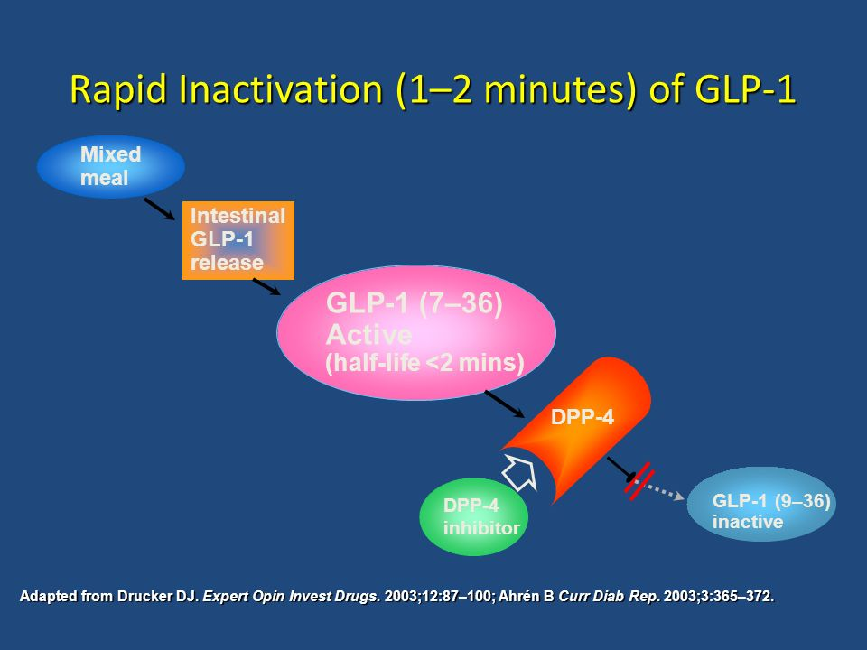 Rapid Inactivation (1–2 minutes) of GLP-1