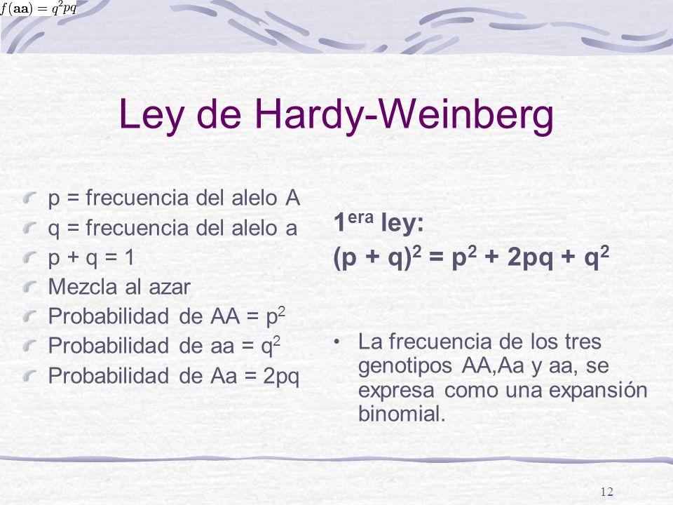 Ley de Hardy-Weinberg 1era ley: (p + q)2 = p2 + 2pq + q2