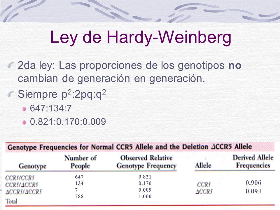 Ley de Hardy-Weinberg 2da ley: Las proporciones de los genotipos no cambian de generación en generación.