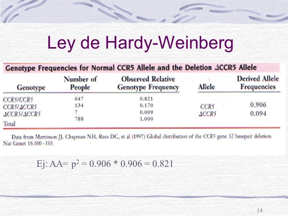 Ley de Hardy-Weinberg Ej: AA= p2 = 0.906 * 0.906 = 0.821 0.906 0.094