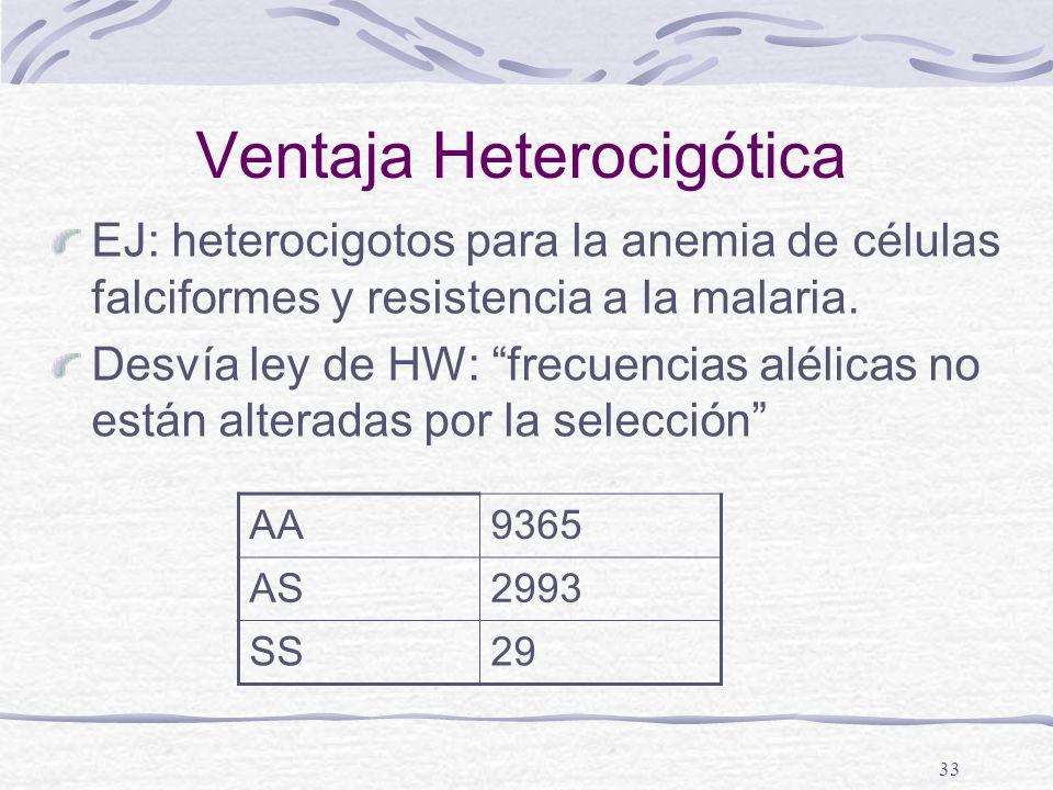 Ventaja Heterocigótica